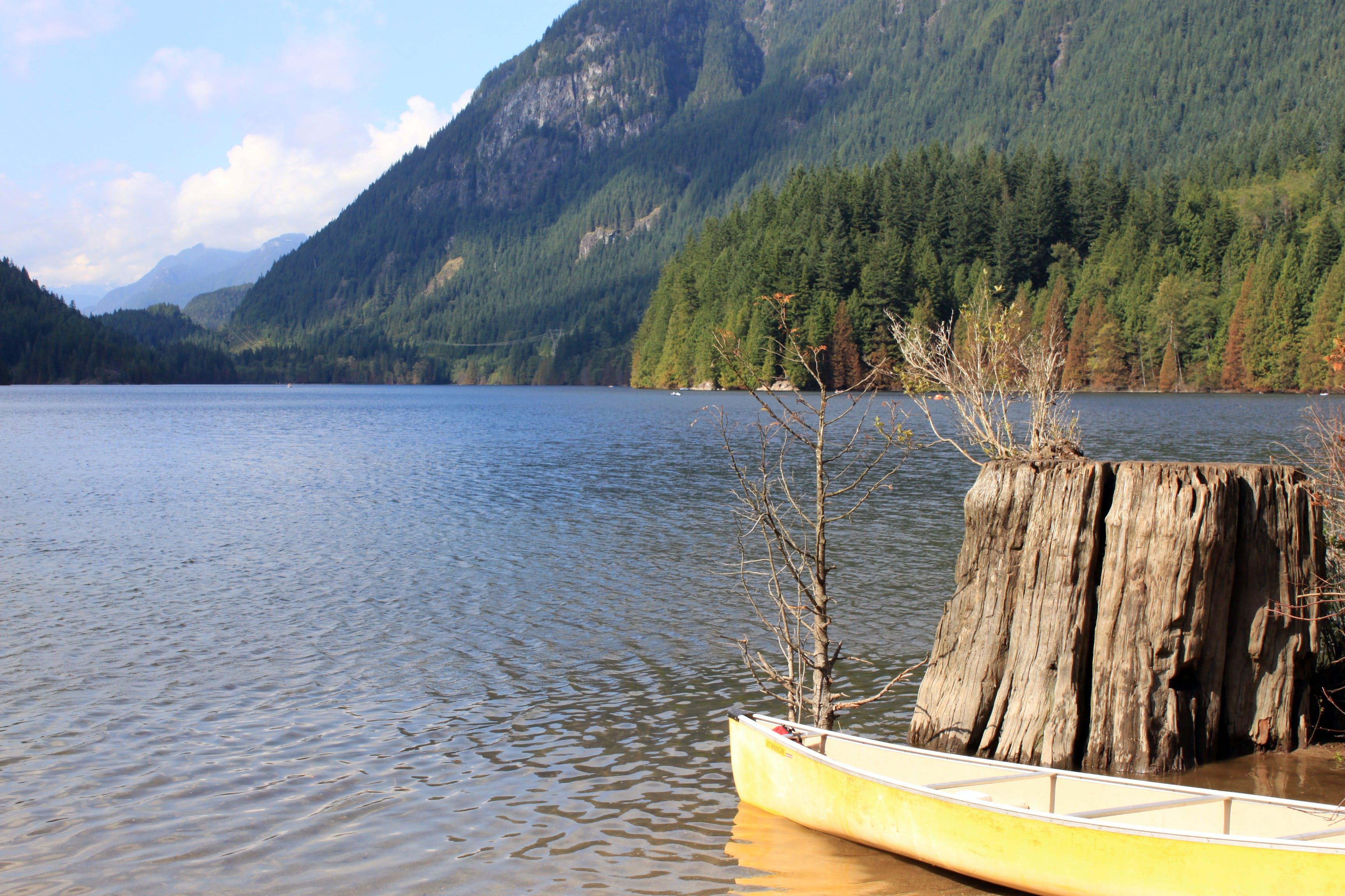 Gratis lagerfoto af buntzen sø, Canada, kano, landskab