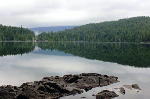 Ingyenes stockfotó erdő, sasamat tó, sziklák, tájkép témában