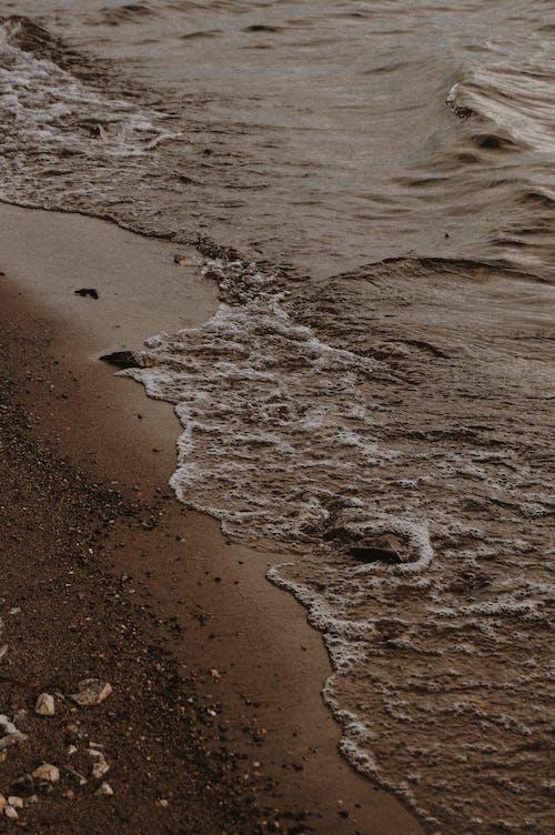 Fotobanka sbezplatnými fotkami na tému blato, breh, cestovať