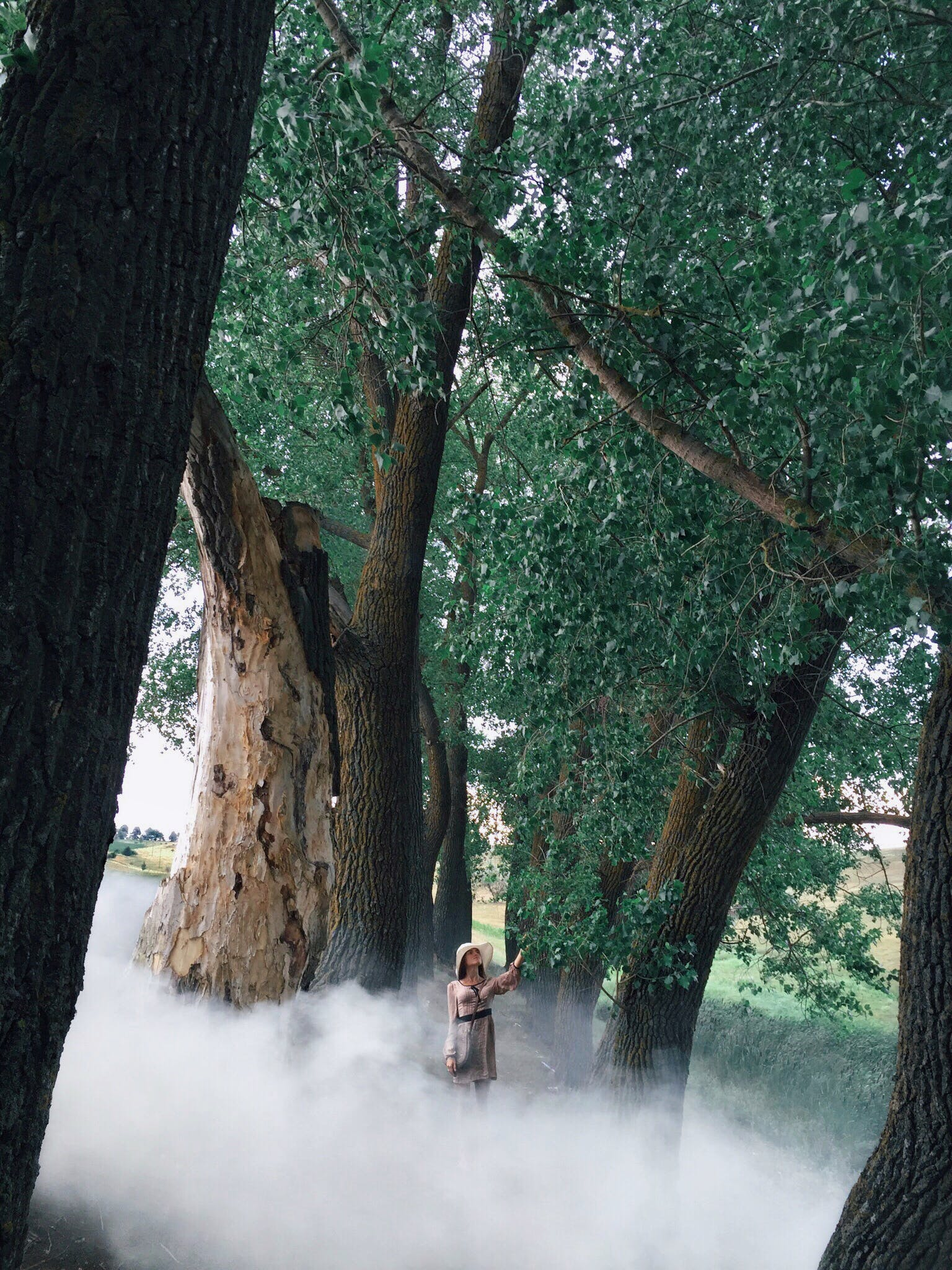 Woman In Dress Surrounded By White Smoke And Trees