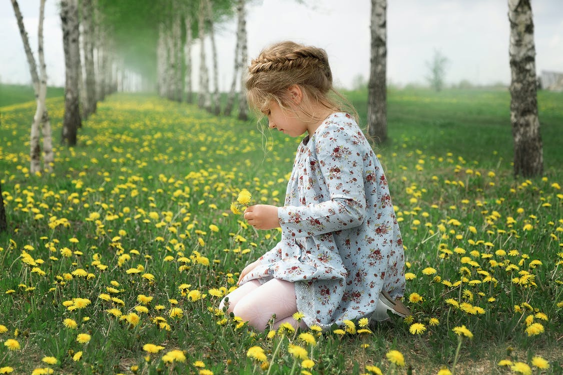 Child Wearing Floral Dress Picking Flowers