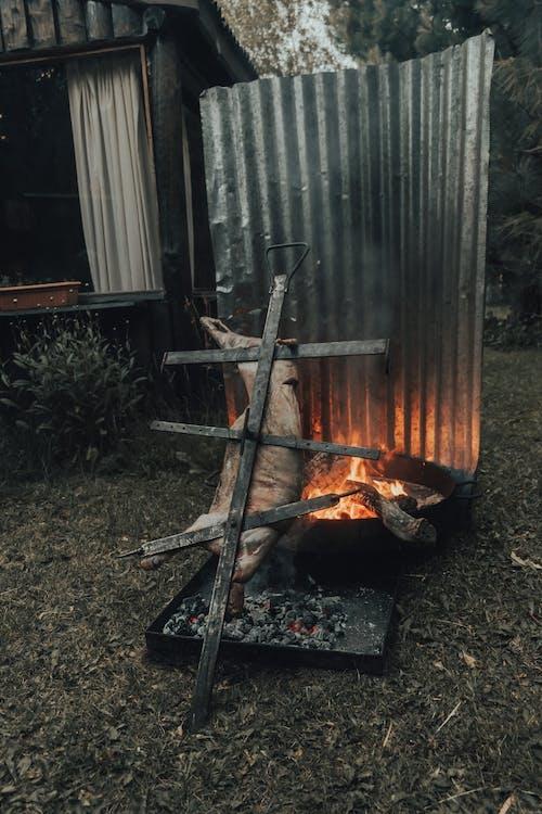 Fotos de stock gratuitas de abrasador, ardiente, en llamas