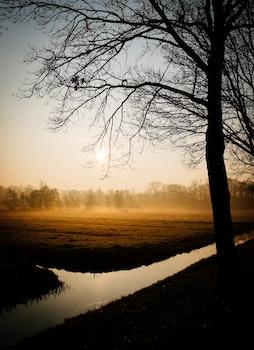 Free stock photo of dawn, landscape, nature, sunset