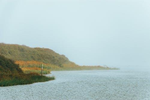 Kostnadsfri bild av dimma, falla, flod