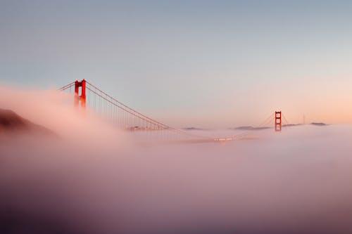 Kostnadsfri bild av bro, dimma, gryning
