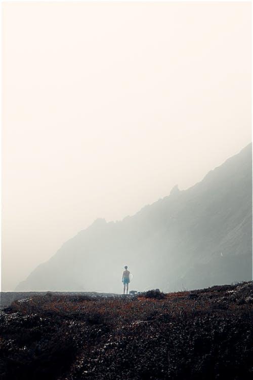 Kostnadsfri bild av berg, dimma, gryning