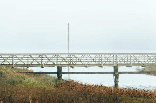 Kostnadsfri bild av bro, dimma, flod