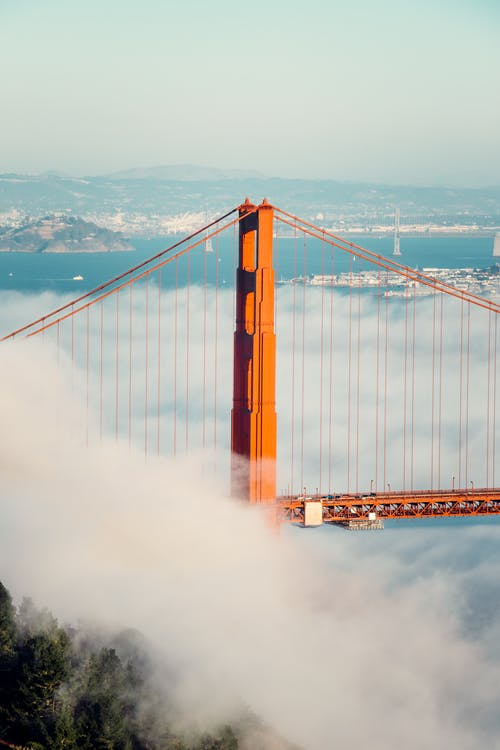 Kostnadsfri bild av arkitektur, bro, dimma