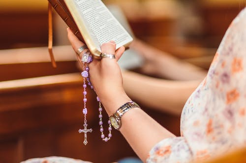 Crop Photo of Woman Reading The Bible and Praying