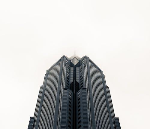 亚特兰大, 城市, 對比 的 免费素材图片