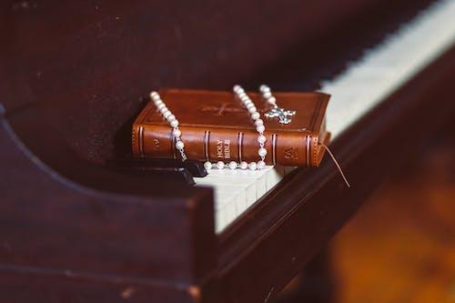 Foto stok gratis agama, Alkitab, Katolik