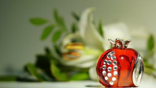 Free stock photo of pomegranate