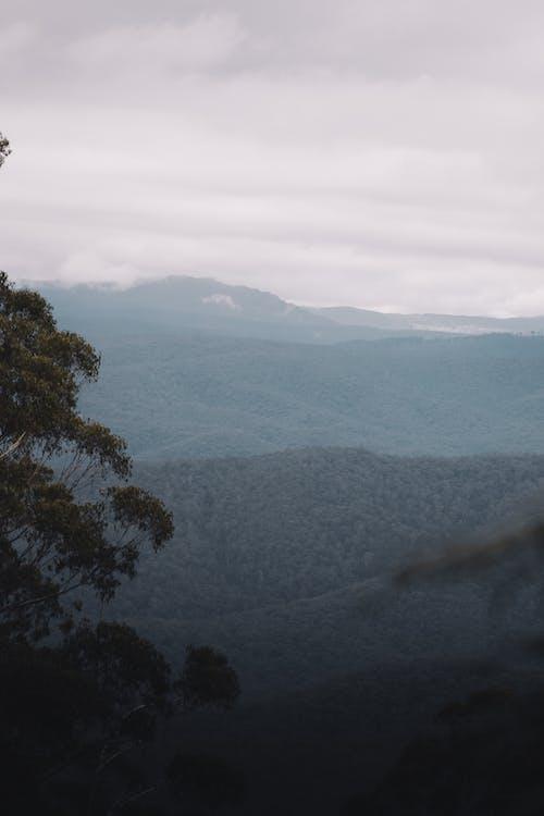 @戶外, 亞拉山脈, 光 的 免費圖庫相片