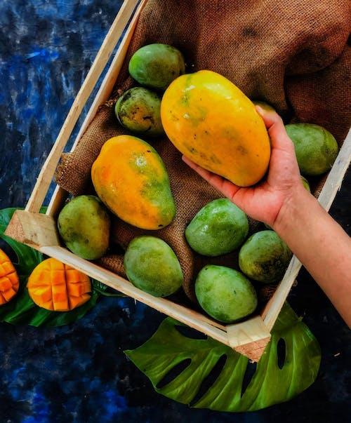 Бесплатное стоковое фото с выращивать, группа, диета