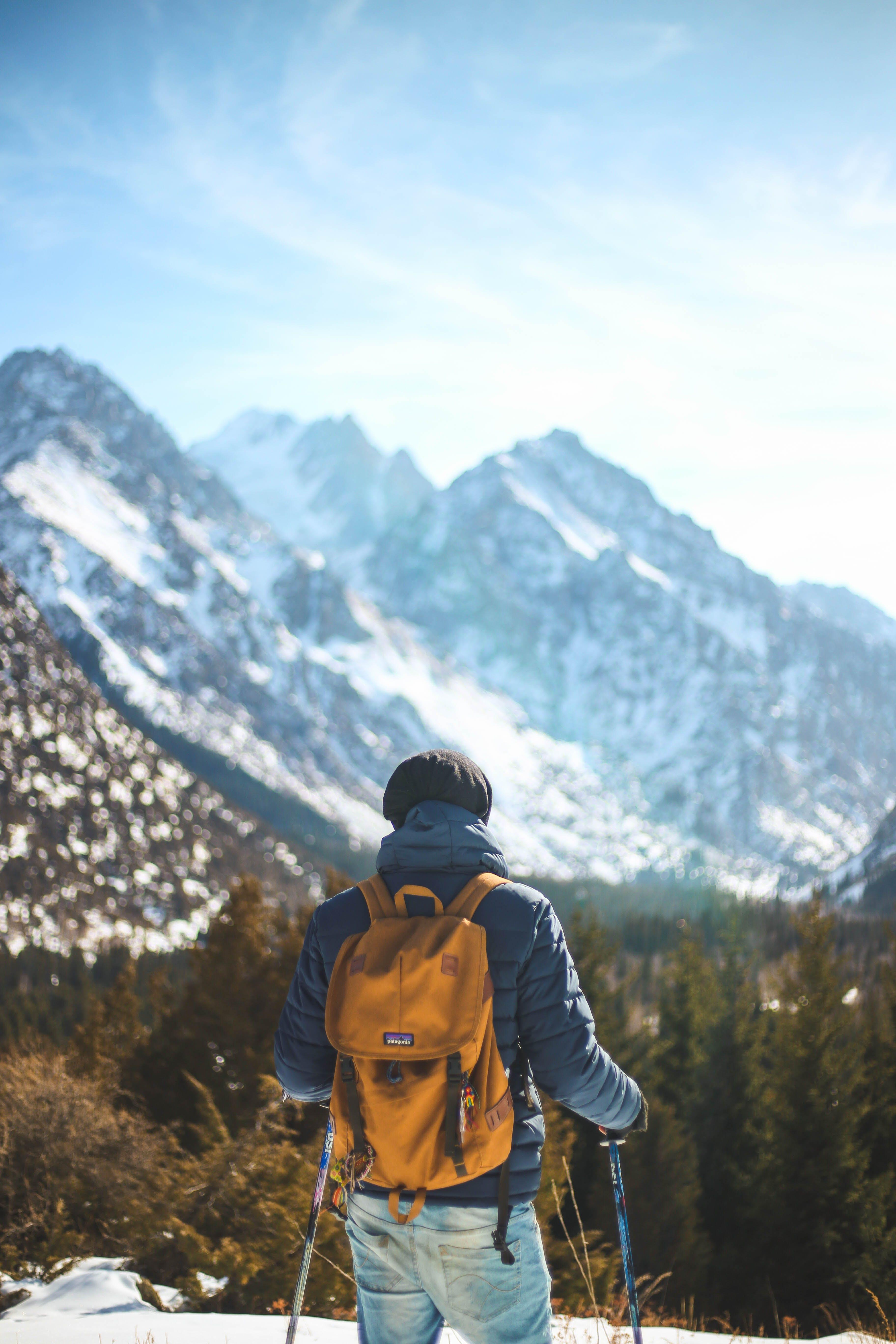 Kostenloses Stock Foto zu schnee, berge, wald, winter