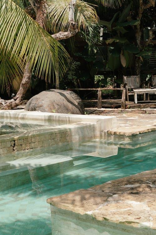 Kostenloses Stock Foto zu badeort, einbaum-pool, exotisch