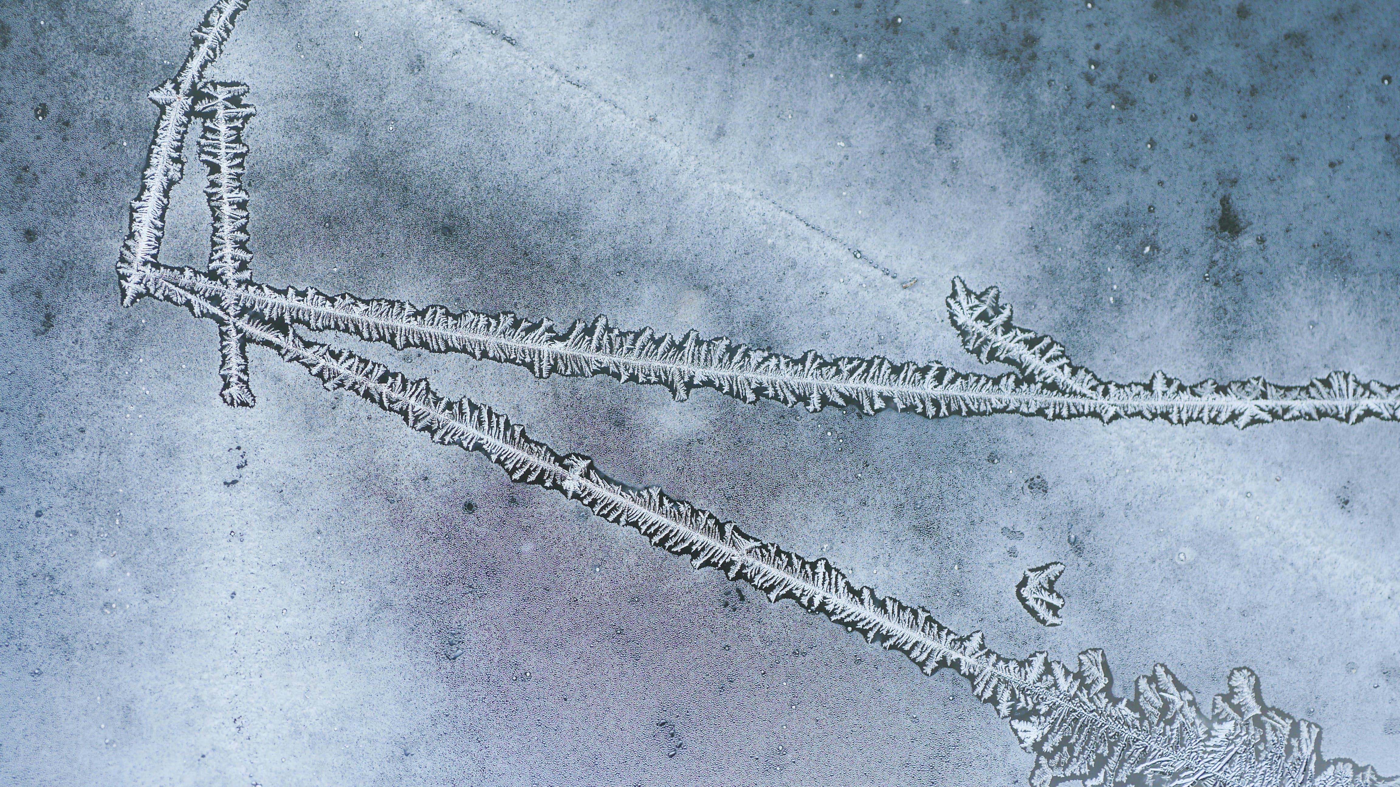 Kostenloses Stock Foto zu eis, frost, kalt, makro