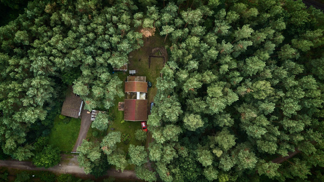 aerial, cabin in the woods, copter