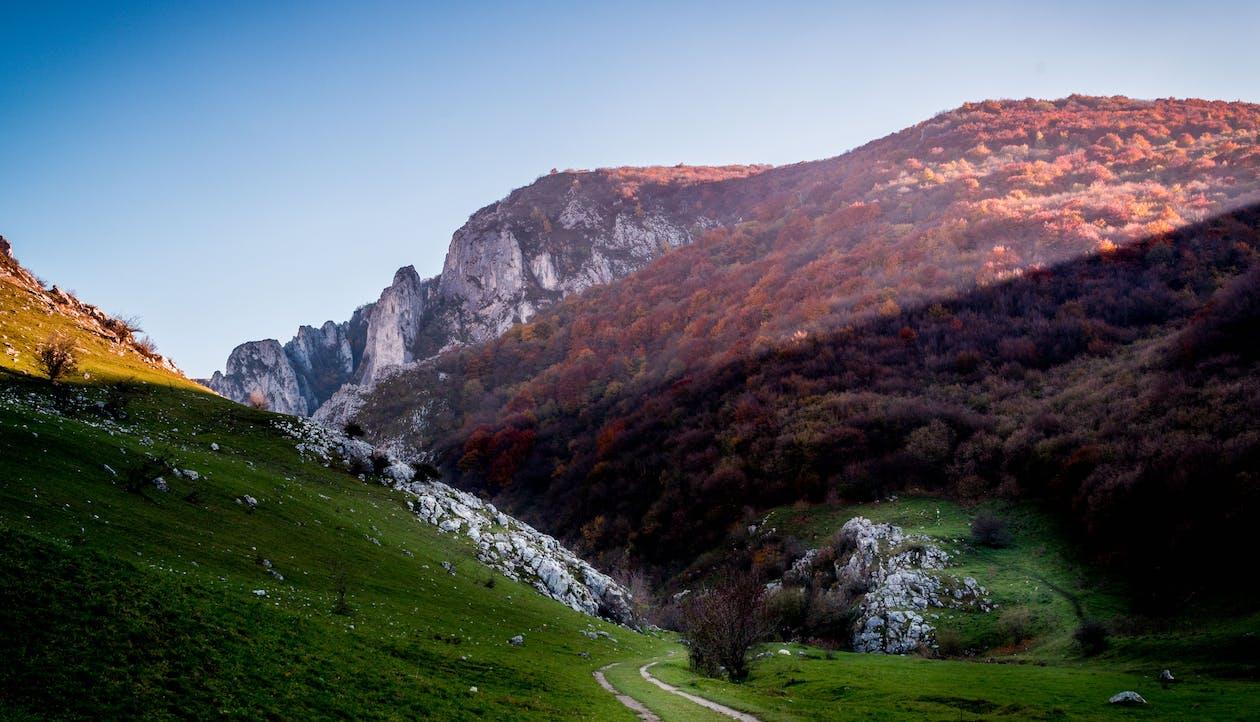 Gratis lagerfoto af bjerg, Rumænien, sommer