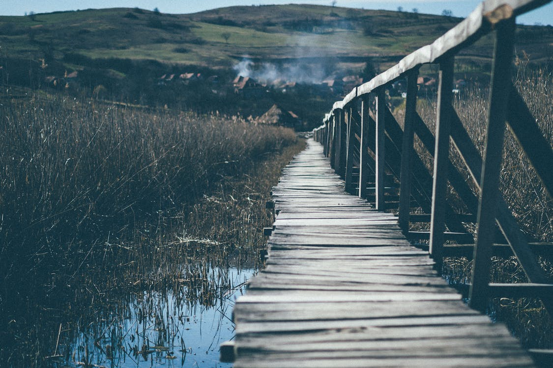 Landscape Photograph of Wooden Bridge Going Up the Mountain