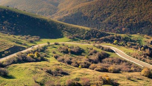 Základová fotografie zdarma na téma hory, krajina, rumunsko