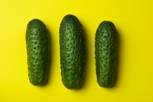 Free stock photo of food, vegetables, cucumbers, gherkins