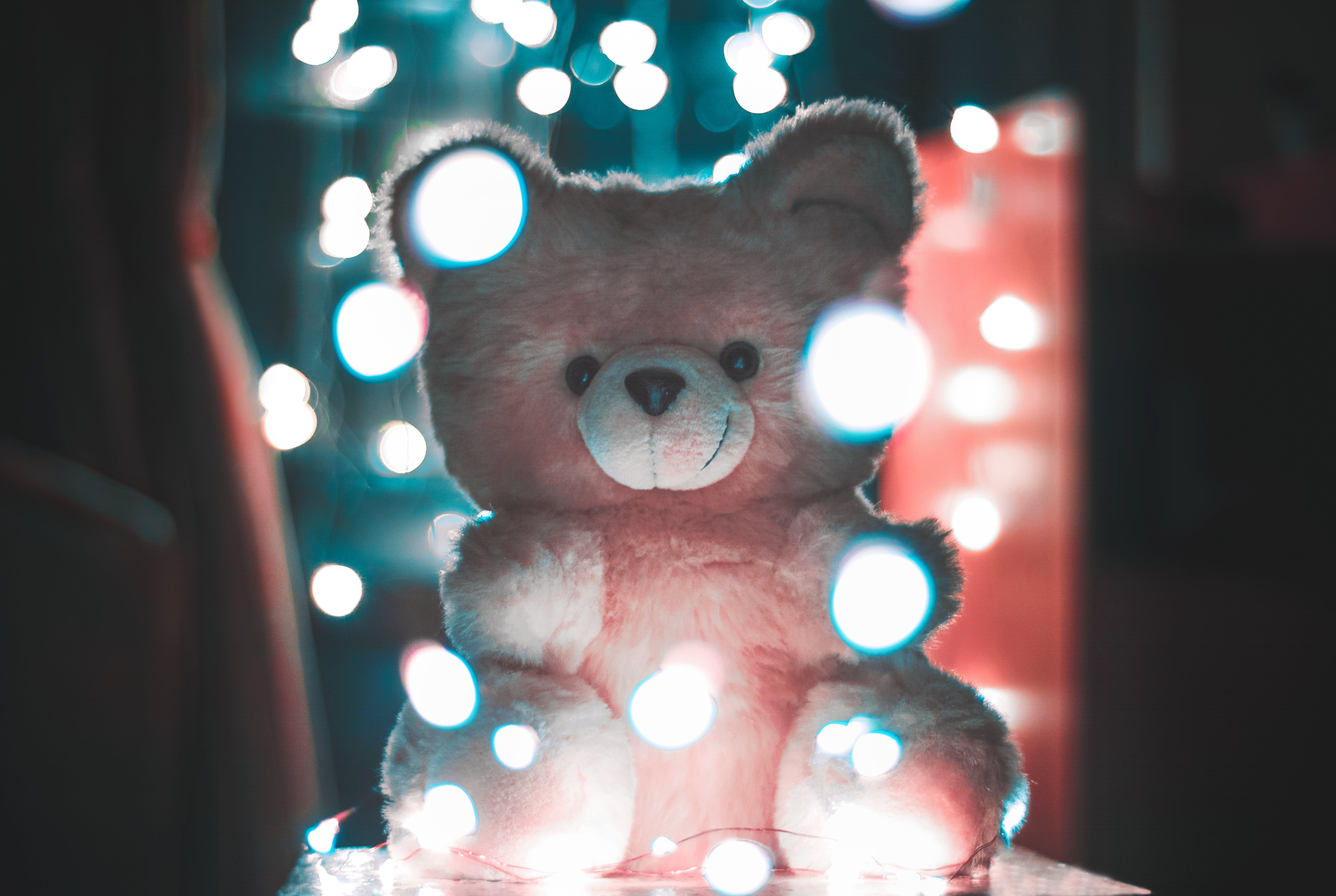 Bokeh Photography of Pink Bear Plush Toy