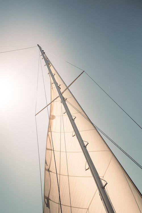 Darmowe zdjęcie z galerii z biały, jasny, liny
