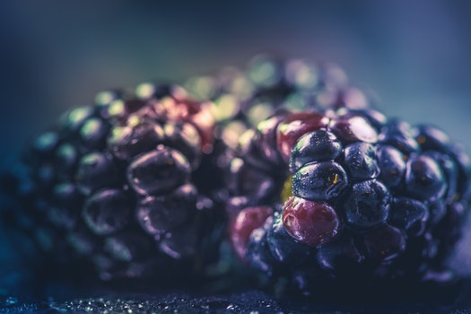 Selective Focus Photography of Purple Fruit
