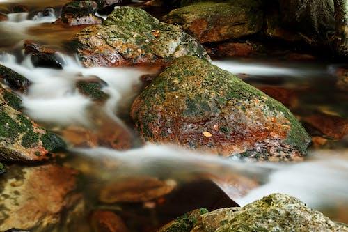 Foto stok gratis air, alam, aliran, aliran air