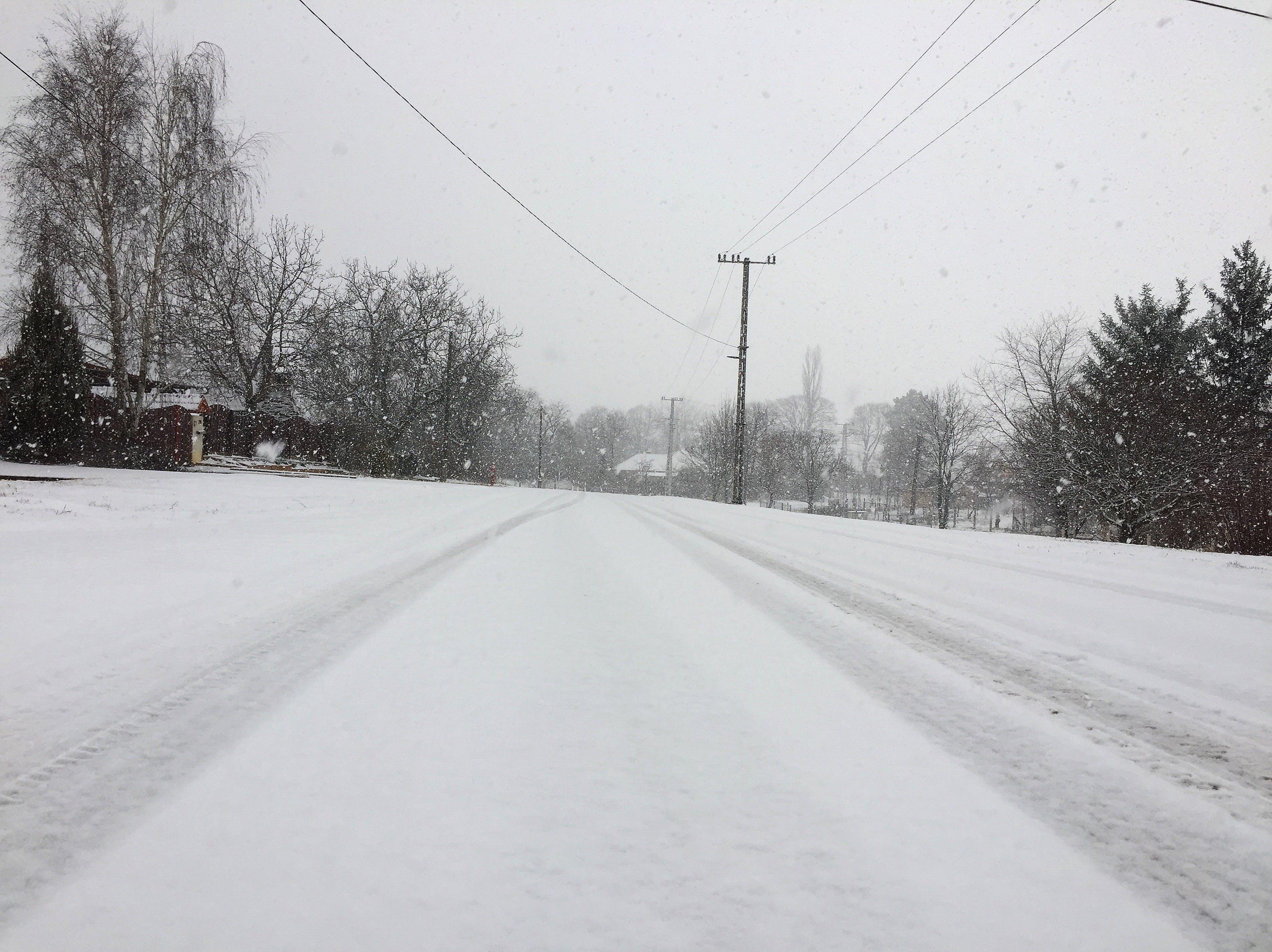 Kostenloses Stock Foto zu schnee, natur, winter, winter straße