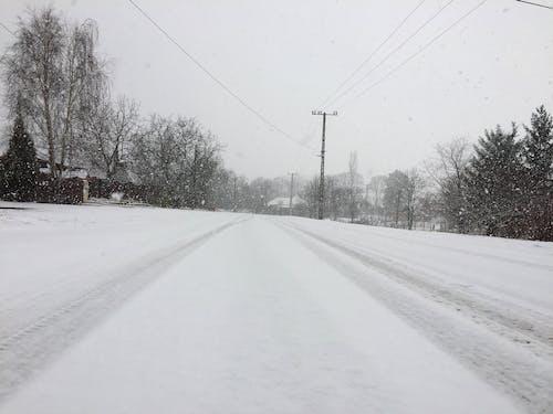 Gratis lagerfoto af natur, sne, vinter, vintergade