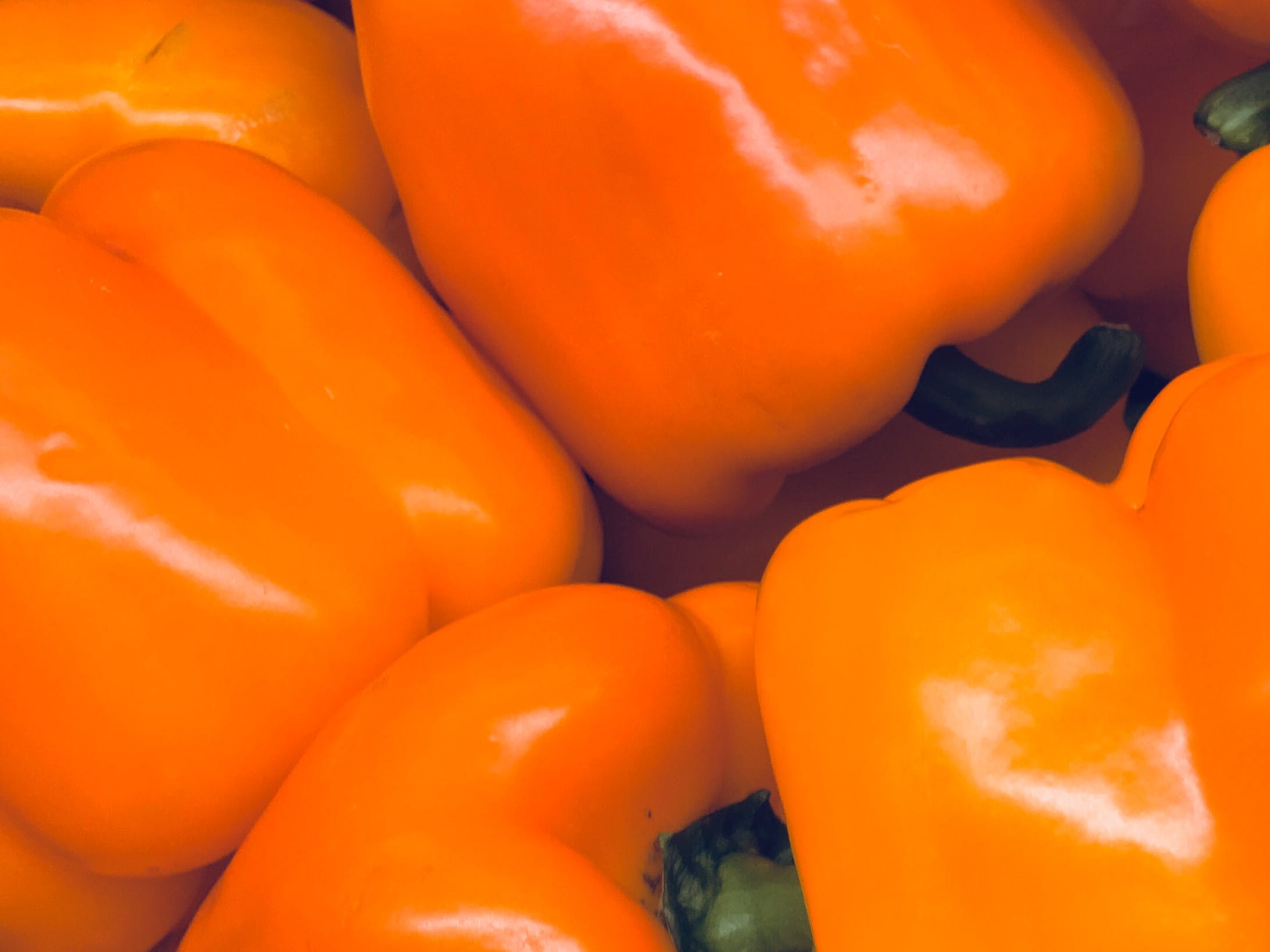 Free stock photo of capsicums, closeup, european, food