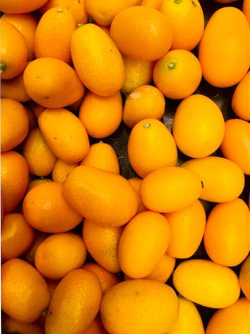 Ảnh lưu trữ miễn phí về cam quýt, trái cam, trái cây, đứa bé