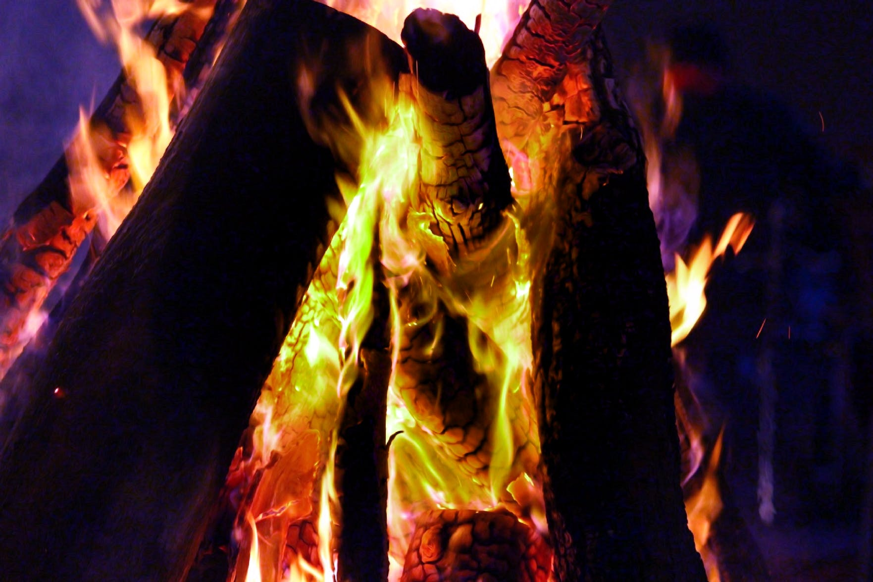 Free stock photo of campfire, fire, logs