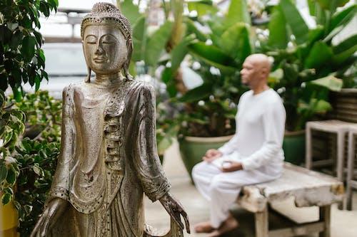 A Man Meditating in the Garden