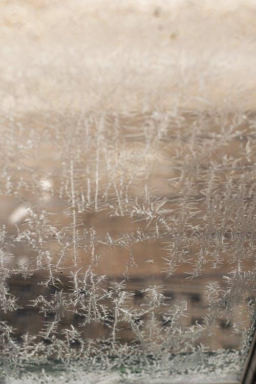 Gratis lagerfoto af forkølelse, frost, is