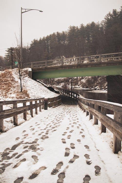Gratis lagerfoto af fodaftryk, i, sne