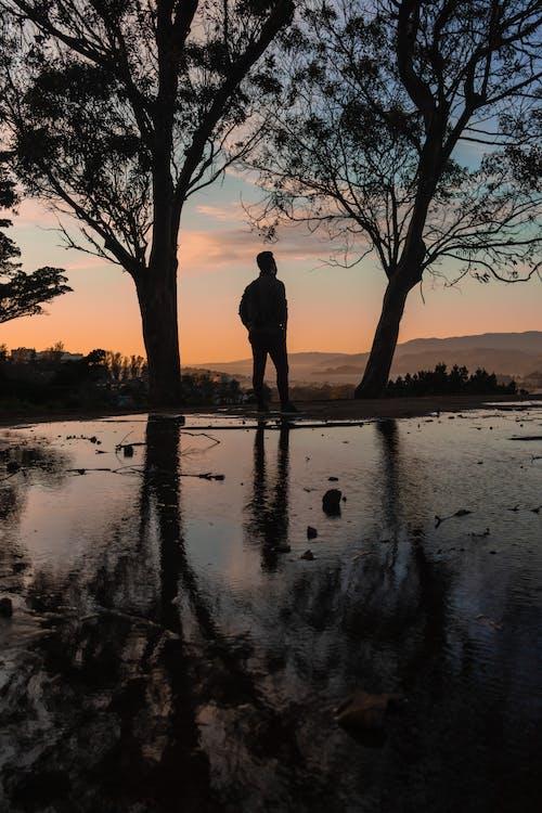 Gratis lagerfoto af aften, bagbelyst, flod