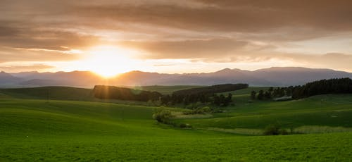 Photos gratuites de arbres, champ, clairière, coucher de soleil