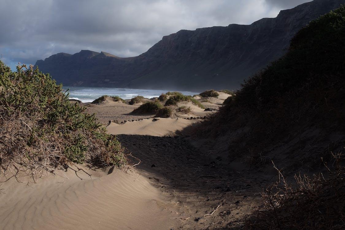 경치, 모래, 모래 언덕