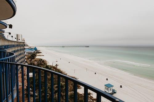 休閒, 佛羅里達, 假期 的 免费素材图片