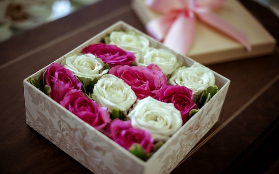 Free stock photo of roses, box, beautiful flowers