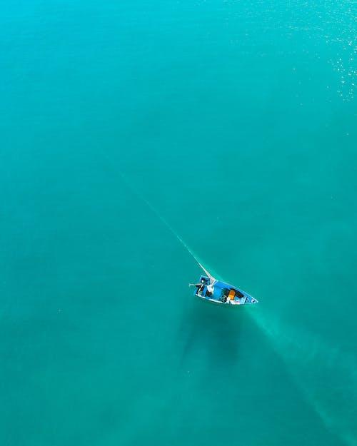 Fotos de stock gratuitas de agua, al aire libre, bajo el agua