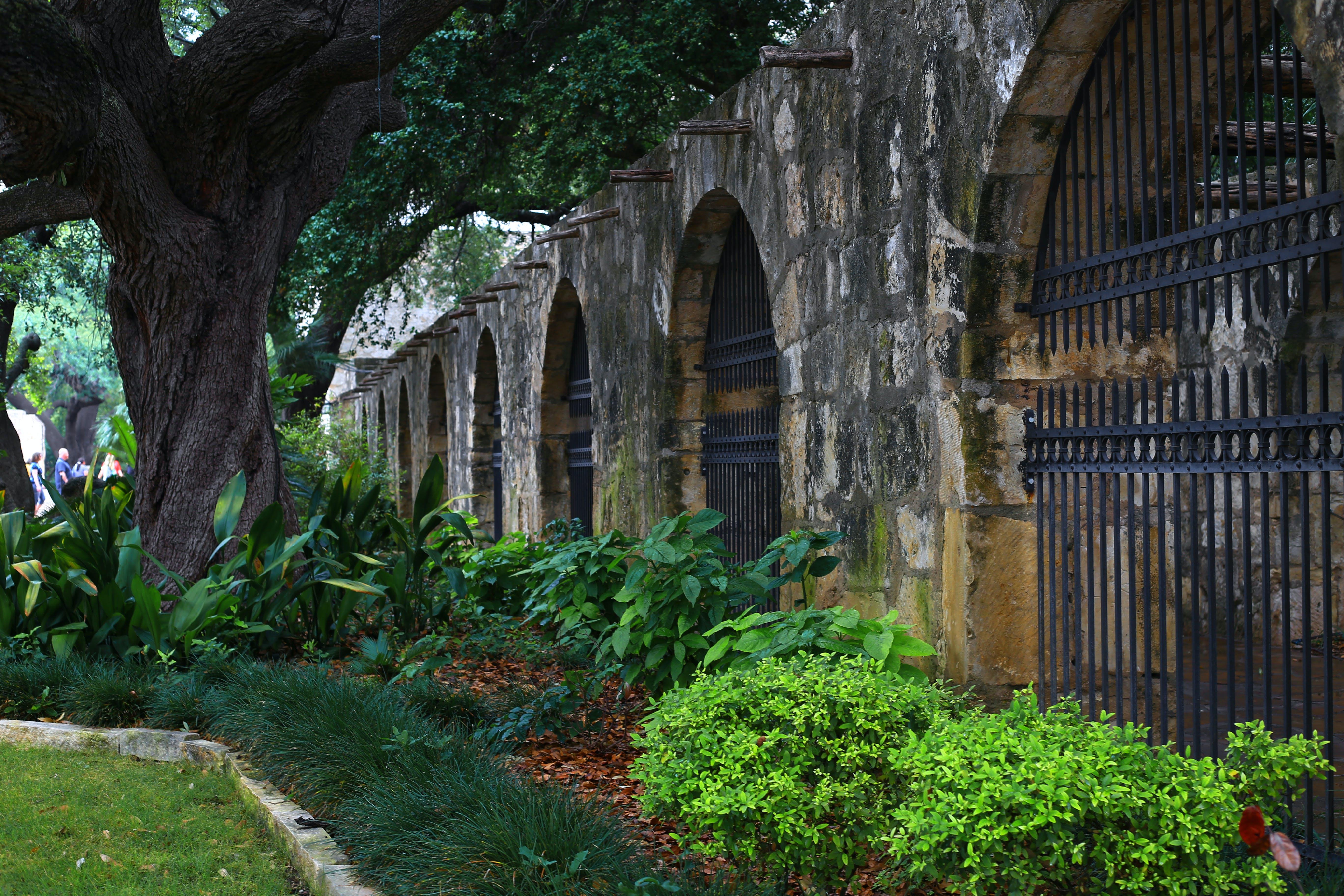 Free stock photo of Alamo, landmark, san antonio