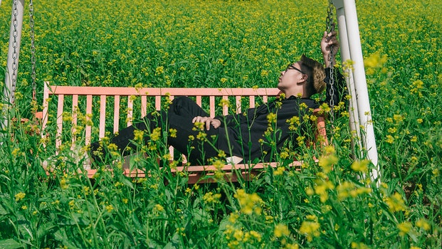 Man in White and Brown Canopy Swing Surrounded With Yellow Petal Flower