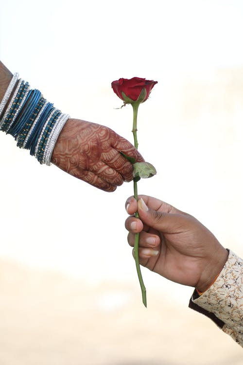 Man Giving a Red Rose to a Woman with Henna Tattoo and Bracelets on Hand