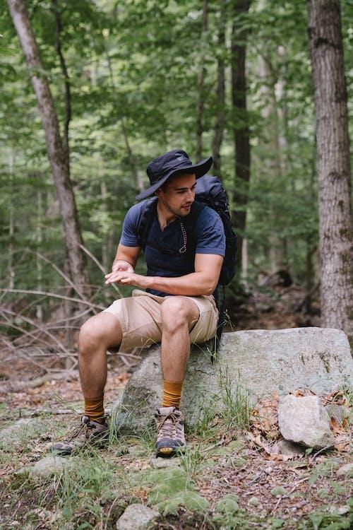 Imagine de stoc gratuită din activ, agrement, arbori