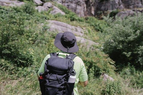 トレイル, ハイキング, バックパッカーの無料の写真素材