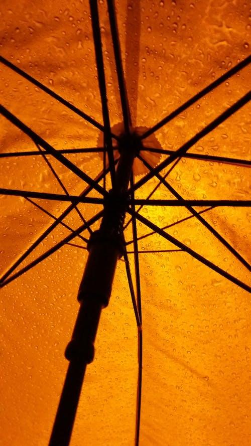 Free stock photo of light, rain, umbrella, yellow